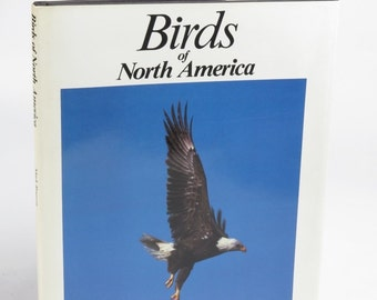 Birds of North America by Mark Rauzon Bison Books London 1987 1st Edition HC DJ
