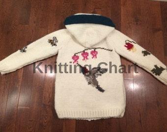 Knitting Chart for Hummingbird Sweater