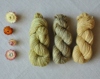 handspun, celandine dyed wool yarn, plant dyed, chelidonium majus, hand spun