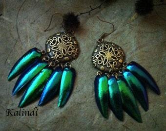 """Earrings with wings beetle borers """"Salem""""/ wings of Green Jewel beetle/Genuine Beetle Wing Earrings from the Green jewel beetle Sternocera"""