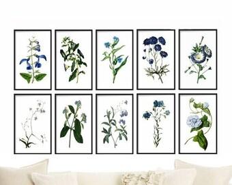 Botanical Print Set of 10 - Botanical Illustration - Botanical Art - Blue Botanical Prints - Wall Hanging - Home Decor - Prints - Wall Art