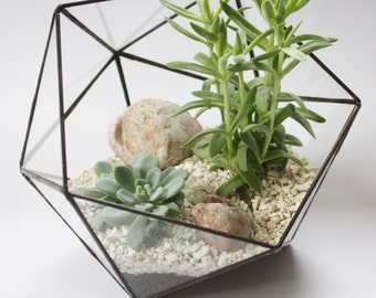 Middle Icosahedron / Stained Glass Terrarium / Handmade Glass Planter / Stained glass vase