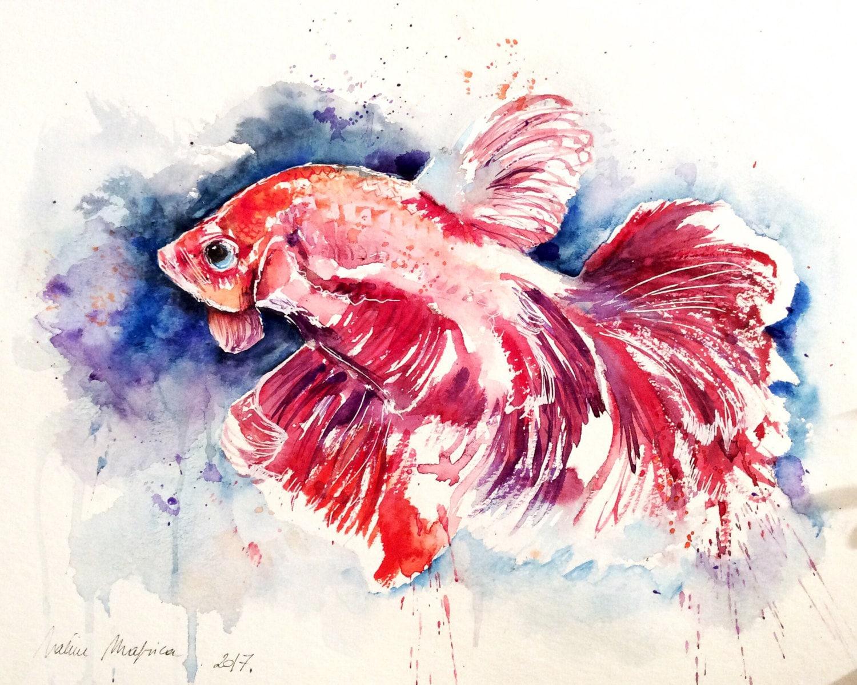 Aquarelle originale livraison gratuite poissons rouge - Poisson rouge gratuit ...