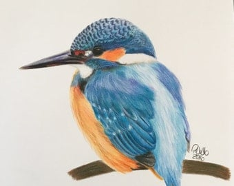 Ice bird - drawing with colored pencil