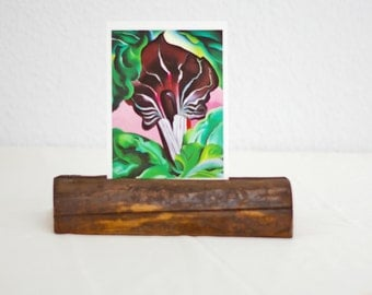 Post card holder photo holder post racks wood Driftwood for photos photo holder