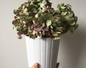 Potted Dried Floral Arrangement
