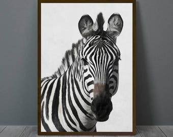 Zebra Print, Zebra Wall Decor, Zebra Poster, Zebra, Animal Print Wall Decor, Zebra Wall Art, Zebra Nursery Print