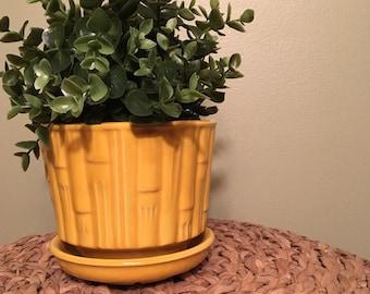 Yellow McCoy Bamboo Planter