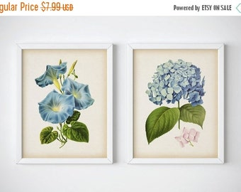 Unique Morning Glory Print Related Items Etsy