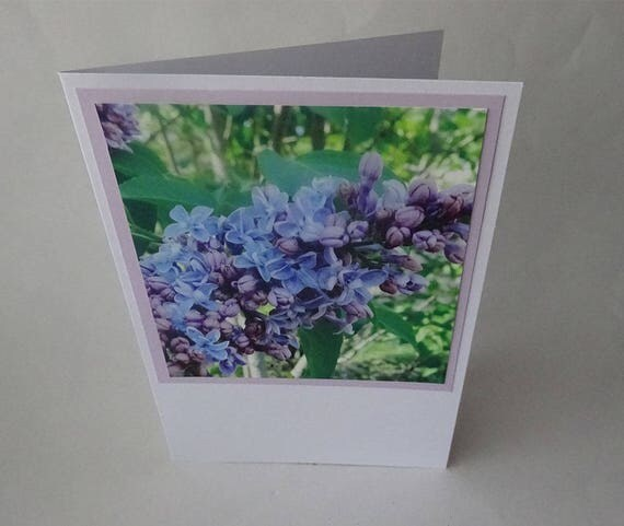 Mother's Day Card - Light Purple Lilac Flowers - #1459