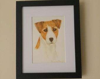 Pet portrait in watercolour