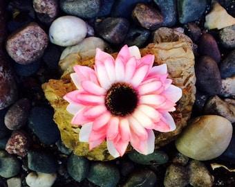 Tropical pink daisy silk flower hair clip