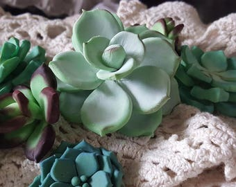 Set of 13 Succulent Cake Toppers