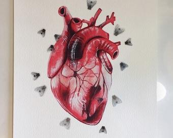 Corazón con moscas impresión