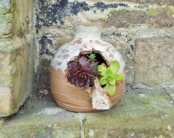 Stoneware Ceramic Succulent Pot