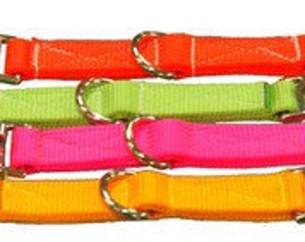 Horse Lunge Converter Straps ~ Tough Nylon Webbing In Bright Colours