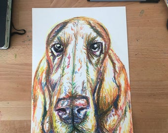 Bloodhound drawing, A4 oil pastel, original art, Bassett hound drawing, bloodhound art, Hound drawing, Dog art, Dog oil pastel,