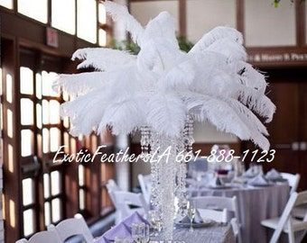 "1/100 pcs White Ostrich Feathers 15-18"", U.S.A. Supplier Calif. Wedding table centerpiece,ostrich feather centerpiece. ExoticfeathersLA"