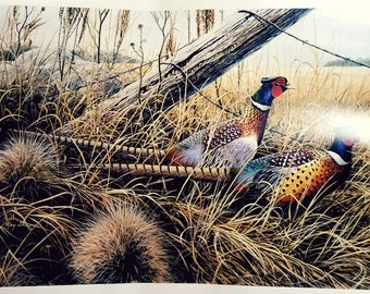 Ray Shaw Signed and Numbered Limited Edition Print