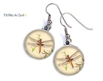 Bijoux d'oreilles libellules vintages , crochets acier chirurgical ,ref.252