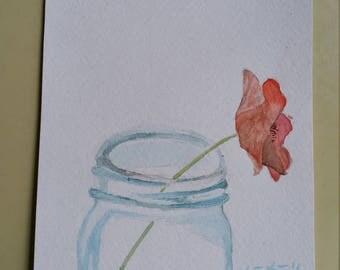 A Poppy Flower in jar