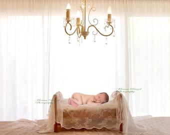 Digital  Backdrop Newborn prop bed