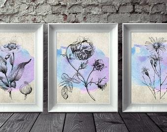 Floral Print Set, Watercolor Flowers, Set of 3, Flower Print Set, Antique Botanical, Floral Wall Art, Printable Art, Instant Download