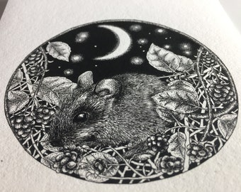 Black and white pen illustration of a mouse and brambles