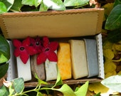 All Natural Soap Sampler pack