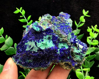 Incredible!!! Bright Blue Azurite & Green Malachite Mineral Specimen, Healing Crystals and Minerals , Ore collectible 180