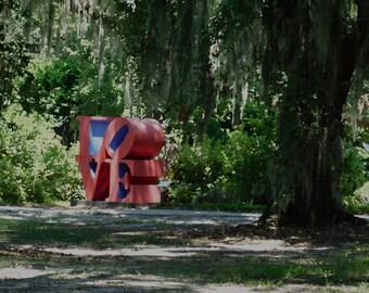 Found Love in City Park