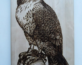 Panno /Falcon/ Hawk/Decoration for home / Pyrography/ Woodburning / Pyrography art