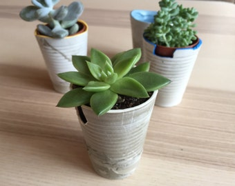 Small flowerpots made of concrete
