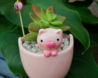 Pig succulent planter - ceramic planter mini planter - succulent pot - home decor - office decor gift indoor (FREE charm, pick, succulent)