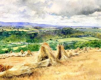 Greetings Card - Sheaves looking towards Dartmoor by Kirsty Bonning