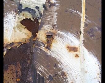 abstract photography, fine art photography, industrial art, abstract art, rust, brown, beige, cream, rustic, urban art, fine art print