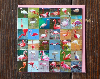 Flamingos | Greeting Card |  Birthday Card | Collections Greetings Card | Pink Flamingo | Card for Kids | Card for Children | Animal Cards