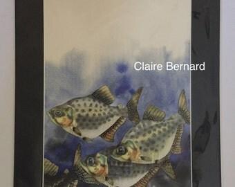 Print from an original watercolour painting piranha fish - fine art