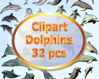 Clipart Dolphins 32 pcs PNG, marine animals PNG