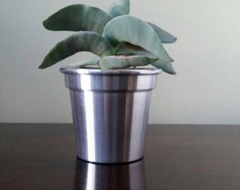 4 Inch Aluminium Plant Pot/Planter