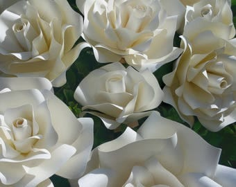 White Rose Set (of 8)