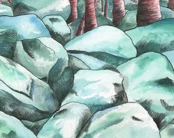 Hacklebarney Park River Rocks