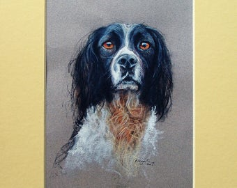 Mounted Print of a Working Cocker Spaniel