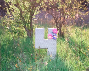 "Sunset Flower ""4"" Digital Photography Backdrop Background"