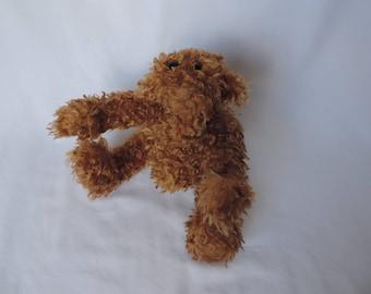 Teddy Bear - Chip