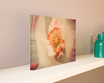 Large Acrylic Photo Blocks (9x6, 12x8, 15x10, 18x12) - Mother Nature Abstract Series 9 - Made 100% In USA - Free Shipping