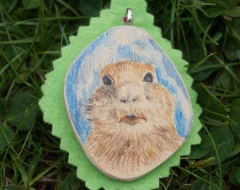 Marmot down and annexes