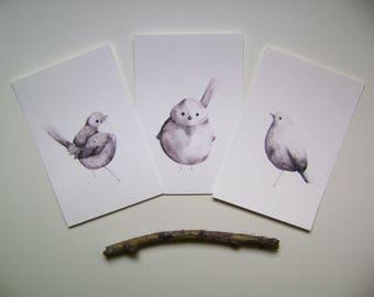 A6 Chubby Birds Prints