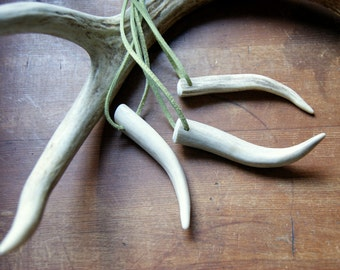 Antler Tip Necklace with Sage Green Cord - antler necklace - Antler Jewelry - unisex fashion - Antler Pendant - real antler necklace