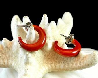 Reddish Brown Half Hoop Earrings, Vintage Hoop Earrings, 1970 Brown Earrings, Lucite Hoop Earrings, Costume Jewelry